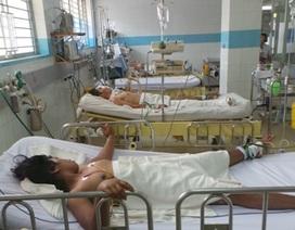 Địa phương lơ là, bệnh sốt xuất huyết gia tăng