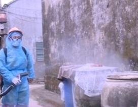 Thanh Hóa: Dịch sốt xuất huyết tăng cao do yếu tố ngoại lai