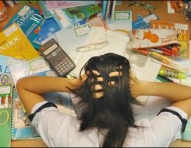 Áp lực thi cử (2): Làm sao để con không bị… tâm thần?