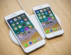 """iPhone 8 và 8 Plus bị """"tố"""" có âm thanh lạ khi thực hiện cuộc gọi"""