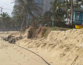Bờ biển du lịch Đà Nẵng bị xâm thực nặng