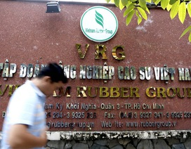 Trước 1/1/2018, Bộ Công an phải báo cáo Thủ tướng về sai phạm Tập đoàn Cao su