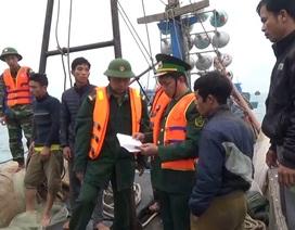 Bắt giữ 6 đối tượng dùng mìn tự chế đánh bắt cá trên biển