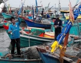 Vẫn còn 1.000 tàu thuyền trên biển, hơn 200 nghìn dân cần di dời trước bão 16