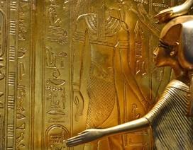 Bí quyết đoán giới tính thai nhi và xác định vô sinh của phụ nữ Ai Cập cổ đại