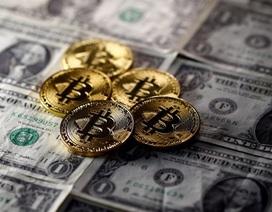Giá bitcoin trong cơn điên loạn: Cảnh báo thị trường có thao túng