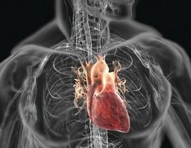 4 cảnh báo động mạch có nguy cơ tắc nghẽn