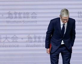 Liên tiếp bị kiện, Apple xin lỗi vì làm chậm iPhone đời cũ