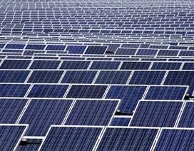 Đầu tư hơn 4 nghìn tỷ đồng xây dựng nhà máy điện mặt trời