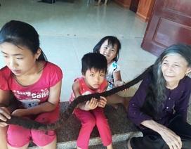 """Cụ bà người Việt lên chuyện lạ báo nước ngoài vì """"mái tóc rồng"""" dài 3 mét"""