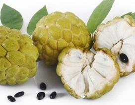 Chớ dại ăn những loại trái cây này vào buổi tối