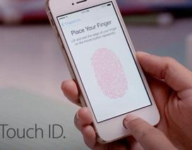 Mẹo khắc phục lỗi kém nhạy khi dùng cảm biến vân tay trên iPhone, iPad
