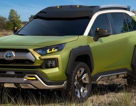 Toyota chuẩn bị ra một mẫu crossover cỡ nhỏ hoàn toàn mới