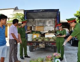 Bắt xe tải chở hơn nửa tấn nội tạng lợn hôi thối đưa vào Ninh Bình tiêu thụ