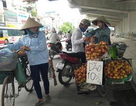 Hà Nội: Có tới 80% trái cây tại các chợ đầu mối không rõ nguồn gốc