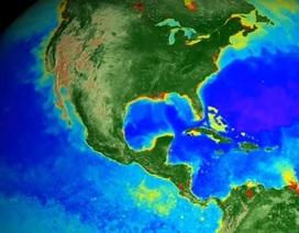 Xem bản đồ sống về sự biến đổi khí hậu của Trái Đất trong 20 năm qua