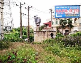 Công ty điện lực thông tin vụ người dân bị điện giật chết khi đi hái rau