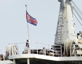 Vũ khí Triều Tiên bị tịch thu tại biển Ả-rập