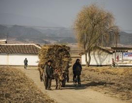 Ảnh hiếm về cuộc sống ở vùng nông thôn Triều Tiên