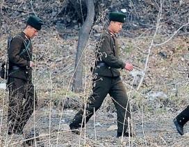 Binh sĩ Triều Tiên đào tẩu qua khu phi quân sự sang Hàn Quốc