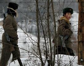 Lính Triều Tiên bơi qua sông đào tẩu sang Hàn Quốc