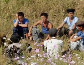 Cuộc sống của lao động Triều Tiên tại Trung Quốc
