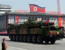 LHQ: Lô hàng Triều Tiên chuyển cho cơ quan vũ khí hóa học Syria bị chặn