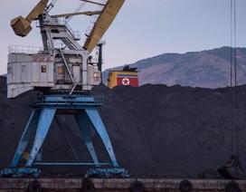 """Than đá Triều Tiên """"chất cao như núi"""" ở cảng vì lệnh trừng phạt"""
