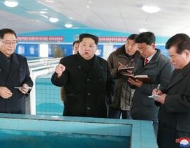 """Ông Kim Jong-un thăm trang trại giữa nghi vấn """"im lặng"""" bất thường"""