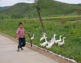 Góc nhìn lạ về quốc lộ Triều Tiên dưới ống kính nhiếp ảnh gia Pháp
