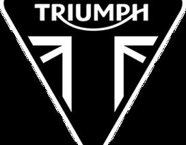 Bảng giá xe máy Triumph tại Việt Nam cập nhật tháng 5/2018