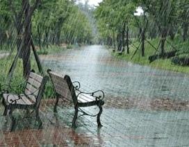 Trắc nghiệm: Cách nói thời tiết mưa trong tiếng Anh như thế nào?