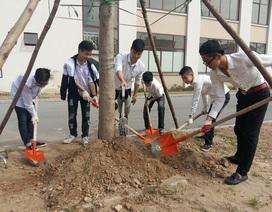 Trồng cây là cách thực hiện ý thức làm việc chuyên nghiệp