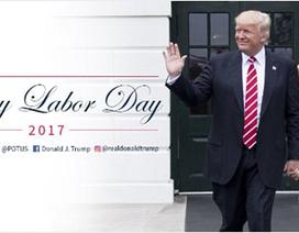 Bức ảnh gây tranh cãi của Tổng thống Trump