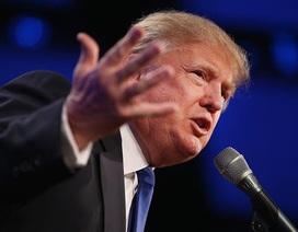 Ông Trump lập đội ngũ vận động tái tranh cử ngay từ bây giờ