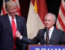 """Phản pháo ông Trump, quan chức Mỹ ví Nhà Trắng như """"trung tâm nuôi dạy người lớn"""""""