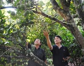 Ông Nguyễn Đức Hưởng không tham gia hội đồng quản trị Sacombank
