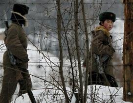 Yonhap: Binh sĩ Triều Tiên bị bắn trọng thương khi đào tẩu sang Hàn Quốc
