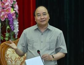 """Thủ tướng: Cần tận dụng cơ hội phim """"Kong"""" để quảng bá du lịch"""