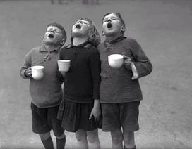 Hình ảnh kể về tuổi thơ một thời nghèo khó nhưng kỳ diệu