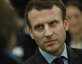 Tấn công mạng hàng loạt nhằm vào ứng viên tổng thống Pháp trước giờ G