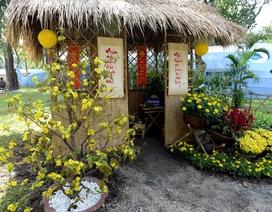 Những tiểu cảnh đặc sắc ở hội hoa xuân trước giờ mở cửa