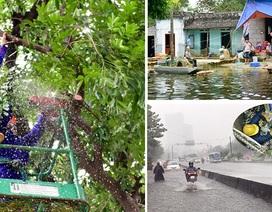 """Siêu máy bơm """"bất lực"""" ở Sài Gòn, Hà Nội ngồi chờ lũ rút"""