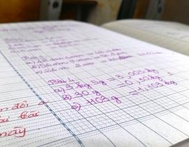 TPHCM: Học sinh tiểu học cần không quá 5 cuốn vở