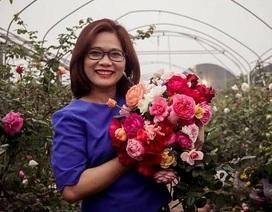"""Nữ thạc sỹ bỏ việc gây dựng """"thiên đường hoa hồng"""" nức tiếng cả nước"""