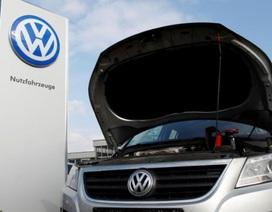 Volkswagen nhất quyết không bồi thường cho các chủ xe ở châu Âu