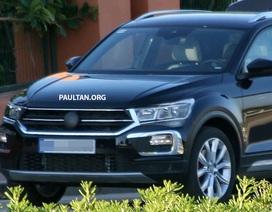 Volkswagen T-Roc chuẩn bị gia nhập phân khúc SUV cỡ nhỏ