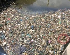 Cơ chế đặc thù sẽ giúp Sài Gòn sạch và xanh hơn?