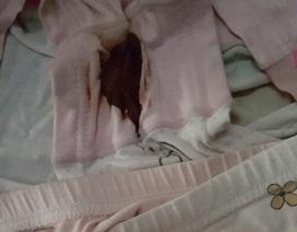 TPHCM: Gia đình phản ánh bé lớp 1 bị xâm hại tình dục tại trường