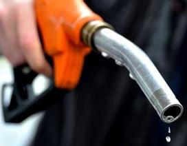 Cây xăng bán gần 4.000 lít xăng không hợp chuẩn bị phạt 140 triệu đồng